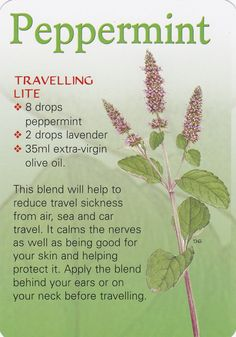 Don't let travel sickness ruin your trip! The 'Travelling Lite' roller-bottle blend combines lavender and peppermint to ease nausea and discomfort - simply carry with you and apply when needed Essential Oil Uses, Doterra Essential Oils, Doterra Blends, Young Living Oils, Young Living Essential Oils, Healing Herbs, Natural Healing, Medicinal Herbs, Home Remedies