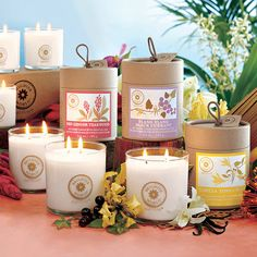 Brighter World by PartyLite - rare fragrance ingredients from exotic places in soy blend candles. Order @ www. Taper Candles, Scented Candles, Pillar Candles, Candle Jars, Bougie Partylite, Grilling Gifts, Candle Companies, Exotic Places, Decoration