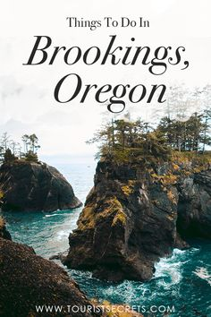 Things To Do In Brookings, Oregon Neatly nestled into the southern corner of Oregon's coastline is Brookings; a town as alive and colourful as the sea itself. Brookings possesses all of the best traits of the west coast. It's full of golden s Living In Portland Oregon, Seaside Oregon, Southern Oregon Coast, Newport Oregon, Oregon Beaches, Ashland Oregon, Salem Oregon, Oregon Travel, Oregon Vacation