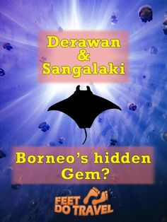 Derawan & Sangalaki are small islands off Borneo's east coast made famous for seeing mantas when diving, but is there more to these islands?