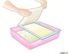 How to Make Paper With a Group of Kids (with Pictures) - wikiHow