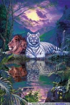 New heaven and new earth - harmony Tiger Images, Tiger Pictures, Tier Wallpaper, Animal Wallpaper, Beautiful Cats, Animals Beautiful, Cute Animals, Big Cats Art, Cat Art