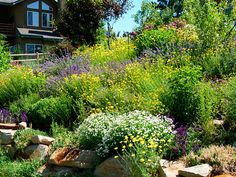 Beautiful Garden Via High Altitude Gardening   I Want My Hill To Look Like  This!