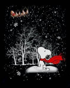 Ideas for happy christmas wallpaper charlie brown Gifs Snoopy, Snoopy Images, Snoopy Pictures, Snoopy Quotes, Art Pictures, Christmas Scenes, Noel Christmas, Christmas Humor, Vintage Christmas