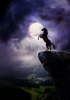 Horse and moon