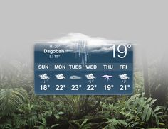 The weather in Dagobah.