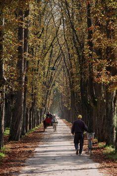 Autumn in Sarajevo, Bosnia & Herzegovina
