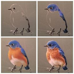 Timestamps DIY night light DIY colorful garland Cool epoxy resin projects Creative and easy crafts Plastic straw reusing ------. Chalk Pastel Art, Pastel Artwork, Oil Pastel Art, Pastel Drawing, Painting & Drawing, Pastel Blue, Bird Drawings, Watercolor Bird, Bird Art