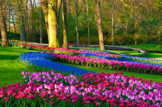 Spring Has Sprung – Here Are The 27 Best Places To See Flowers This Season | Fashion Bat