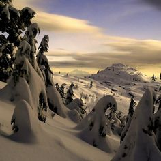 Seymour Cream - Mount Seymour, North Vancouver, British Columbia (Mount Baker, Washington in the background)