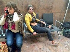Con motivo de los atentados que se han producido en los últimos meses; con Bélgica, Francia, Turquía o Irak como grandes epicentros, un argumento usado por los islamófobos y que a fuerza de repetirlo una y otra vez ha calado en sectores sociales de Europa o Estados Unidos es que los terroristas cometen