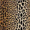 jamil natural leopard fabric from Calico Corners - looks like Scalamandre's Leopardo silk velvet and not as $$$