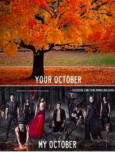 This is so true! Season 5 Premiere - Oct. 3! I can't wait!!!