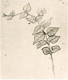 Vincent van Gogh Rama con hojas Drawing