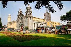 Domingo show de arte en el parque kennedy en Miraflores PERÚ