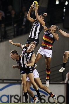 """AFL Football Australia with (black and white) - The mighty Collingwood football team known as """"The Magpies"""""""" and Adelaide Football Club known as """"The Crows"""". Low man on the totem pole was probably 2 feet of the ground! Collingwood Football Club, Australian Football League, Contact Sport, Rugby Men, Athletic Men, Big Men, Melbourne Australia, Football Team, Soccer"""