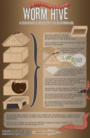 worm_hive__a_multi_layered__stackable_worm_bin_by_crystalsmuse-d4ugwbz.png 800×1,215 pixels
