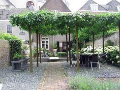 Like the natural pergola Back Gardens, Small Gardens, Outdoor Gardens, Outdoor Sheds, Landscape Design, Garden Design, Gazebos, Arbors, Townhouse Garden