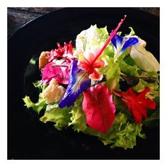 Co-Creative Studio @cocreativestudio Instagram photos A bright plate of Fresh Flowers to start the week! Wishing everyone a great week ahead! | Websta (Webstagram)