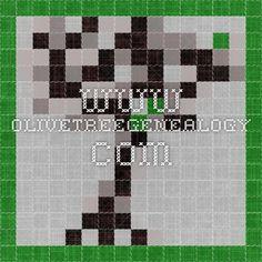 www.olivetreegenealogy.com