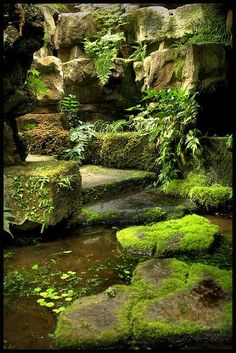 You can use your backyard pond for spending quality family time and have evening tea. The good thing about the backyard pond is that gurgling waterfalls are very much attractive and appealing. So if you haven`t decided on having a pond you must do it now. Moss Garden, Garden Paths, Garden Landscaping, Gravel Garden, Pea Gravel, Succulent Planters, Hanging Planters, Succulents Garden, Herb Garden