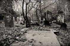 Abandoned graveyard by alanfrombangor, via Flickr