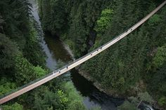 Capilano Suspension Bridge Park – Vancouver, Canada.  Yup, I did it!