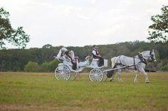 Horse N Carriage Wedding