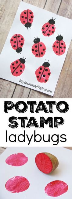 Potato stamp ladybugs - Go Pro - Ideas of Go Pro for sales. - Potato stamp ladybugs fun and easy preschool craft for bug or ladybug week. Perfect art project to go along with the Grouchy Ladybug or Ladybug Girl books. Easy Preschool Crafts, Daycare Crafts, Toddler Crafts, Arts And Crafts For Kids Toddlers, Children Crafts, Preschool Learning, Spring Activities, Craft Activities, Toddler Activities