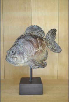 Bronze Pieter Vanden Daele available with In Tempo