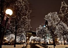 Christmas Lights & Night Photography - Minneapolis Photography ...