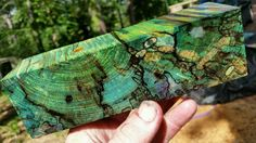 Stabilized spalted pecan , exotic wood knife scale  pistol grip game call blank