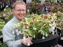 Hellebore Winter Thriller stock plant held by our own Chris Hansen