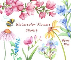 Watercolor Flowers Clipart, Digital Clipart, watercolor clipart, watercolor clip art, Hand Painted clipart, PNG, Personal and Commercial use by PassionPNGcreation on Etsy https://www.etsy.com/listing/210651408/watercolor-flowers-clipart-digital