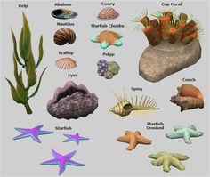Coral Reef from Island Paradise  DOWNLOAD  credits: EA