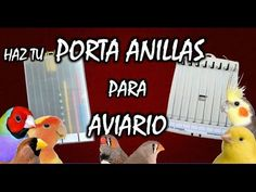 COMO HACER PORTA ANILLAS CASERO PARA PAJAROS | BRICOLAJE |