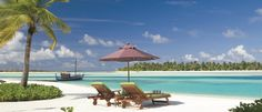 Escape to the tropical Maldives islands. Luxury resort accommodation offered by Naladhu Maldives by Anantara provides the pinnacle of exquisite comfort. Best Resorts In Maldives, Best All Inclusive Honeymoon, Maldives Vacation, Romantic Honeymoon Destinations, Visit Maldives, Maldives Resort, Resort Spa, Hotels And Resorts, Luxury Hotels
