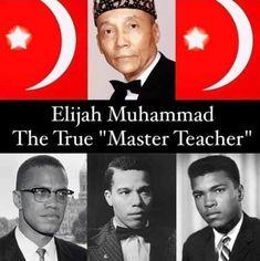 Elijah Muhammad, Teacher, Movie Posters, Movies, Professor, Films, Teachers, Film Poster, Cinema