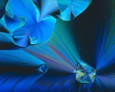 Crystallized acetaldehyde and methylene blue | John Hart | Nikon's Small World