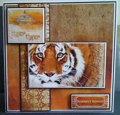 Card made using Pollyanna Pickering's new Worlds Wildlife collection - I love tigers, they are the best big cat Cat Cards, Greeting Cards, Art Pad, African Theme, Craftwork Cards, Fathers Day Cards, Create And Craft, Animal Cards, African Animals