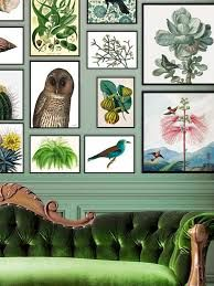 VanillaFly posters, botanical posters