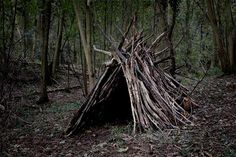 forest dwelling made from small trees- limbs- branches- leaves