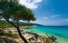 Amazing beaches, wild forested regions and numerous villages, Halkidiki is a rich and beautiful land to explore. Here are the best places to visit Halkidiki Cool Places To Visit, Great Places, Halkidiki Greece, In Ancient Times, Sandy Beaches, Beach Fun, Beach Resorts, Vacation Destinations, Beautiful Beaches