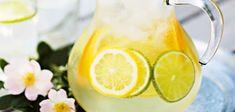 Bent u op zoek naar een lekker recept voor blanke sangria met cava en sinaasappel? Bekijk onze website met de vele lekkere recepten. Een aanrader! Bbq Drinks, Non Alcoholic Drinks, Beverages, Refreshing Drinks, Summer Drinks, Baileys Fudge, Homemade Ginger Ale, Brazilian Lemonade, Vodka Lemonade