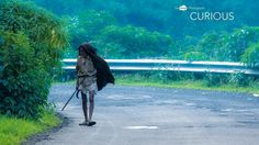 Curious #curious #man #old #search #green #travel #deepstudio www.deep.studio