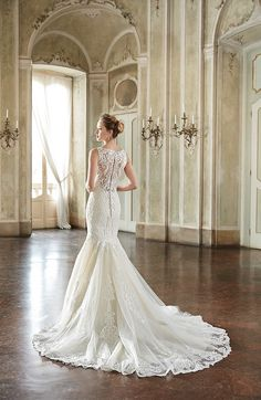 Eddy K Style EK1114: Mermaid dress with illusion neckline and back. Made with lace and tulle, available in ivory and light gold.