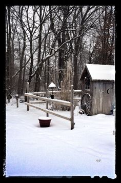 Snowy outhouse. It's days like this I'm glad we have indoor plumbing.