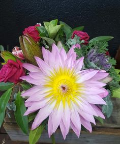 Make your mum's day with stunning Mother's Day flowers delivered in Melbourne, Australia. Order now! Call us at : 0434271351 Online Flower Shop, Online Flower Delivery, Flowers Online, Buy Flowers, Fresh Flowers, Online Florist, Mothers Day Flowers, Flowers Delivered, Melbourne Australia