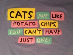Cats are Like Potato Chips, You Can't Have Just One! T Shirt Tee EUC Purple Lrg #Unknown #GraphicTee
