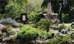 Secret London- The Chelsea Physic Garden, A botanic garden since 1673. So peaceful